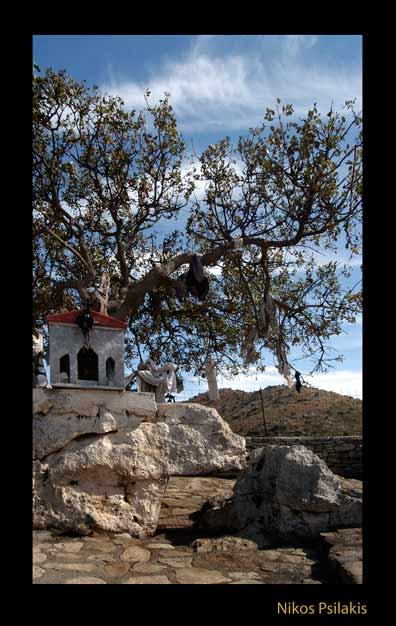 Δεντρολατρία, τρυποπέρασμα, ιερό δέντρο Αχλαδέ